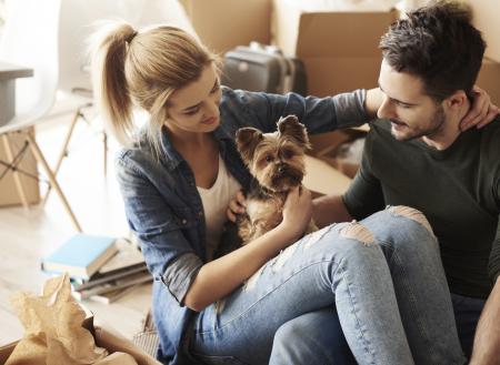Perro de la familia o perro personal ¿De quién es el perro?