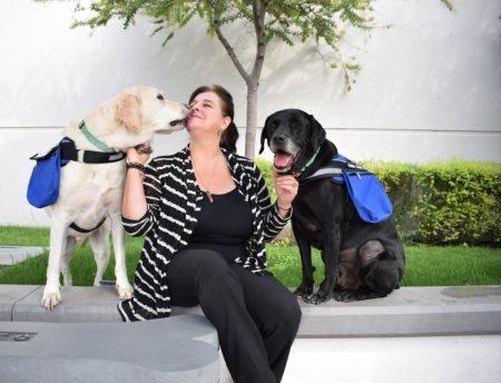 Uso de perros en situaciones de estrés