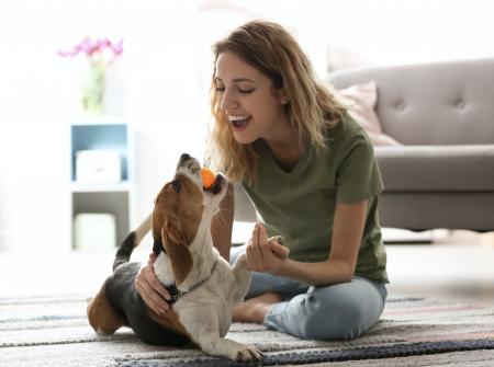 5 cosas divertidas que hacemos con un perro sin darnos cuenta
