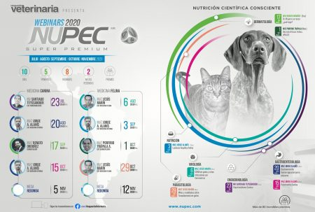 Webinars 2020 NUPEC