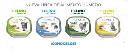 Conoce las nuevas presentaciones de NUPEC alimento húmedo para gatos