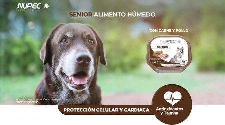 Cuida a tu perro senior con NUPEC alimento húmedo senior