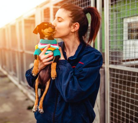Qué es lo que necesito para adoptar a un perro