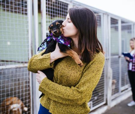 Beneficios de la adopción canina